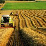 Покупка земли для сельского хозяйства