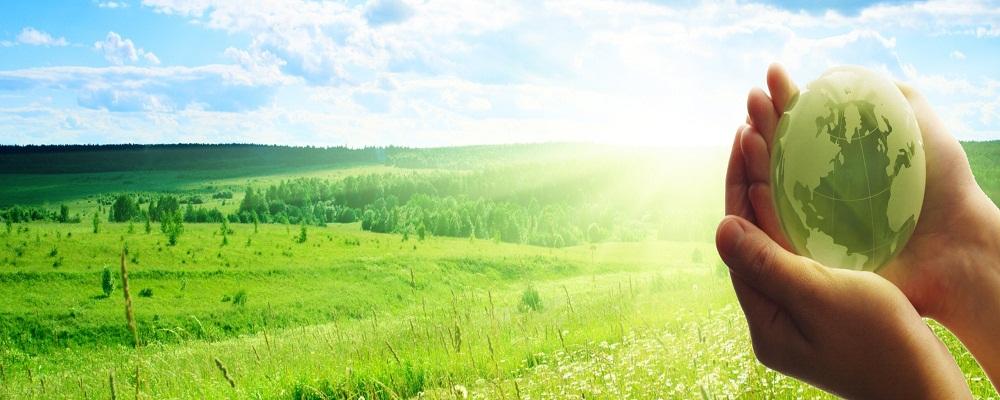 Где можно заказать сопровождение в подготовке экологических изысканий