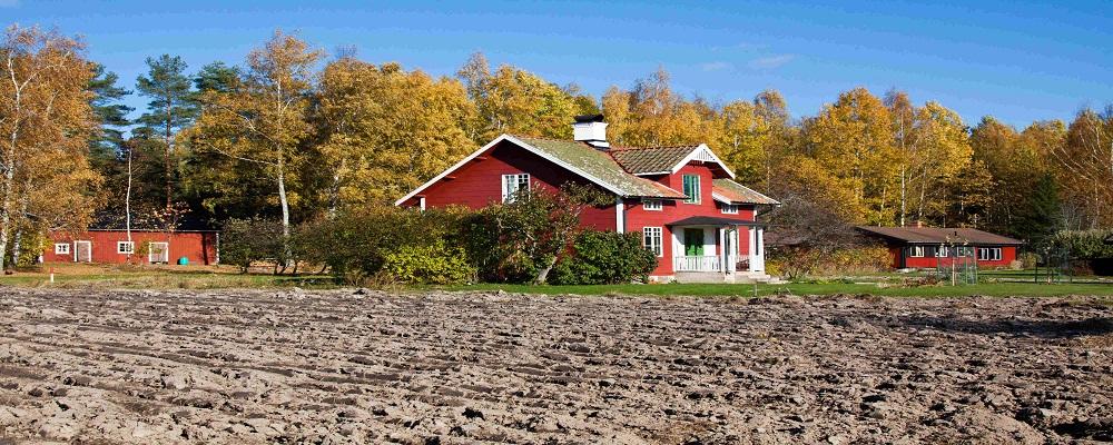 Где можно заказать услуги по приватизации земельных участков