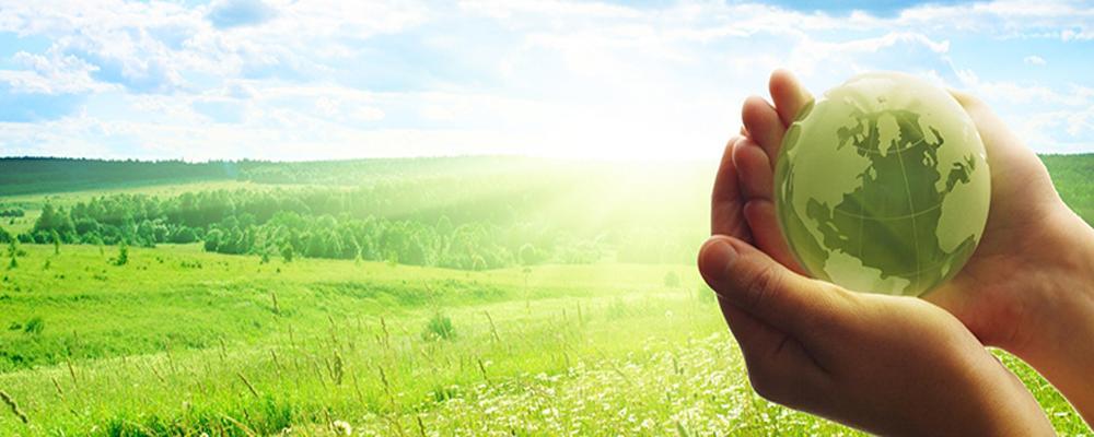 Экологические изыскания Клин Солнечногорск
