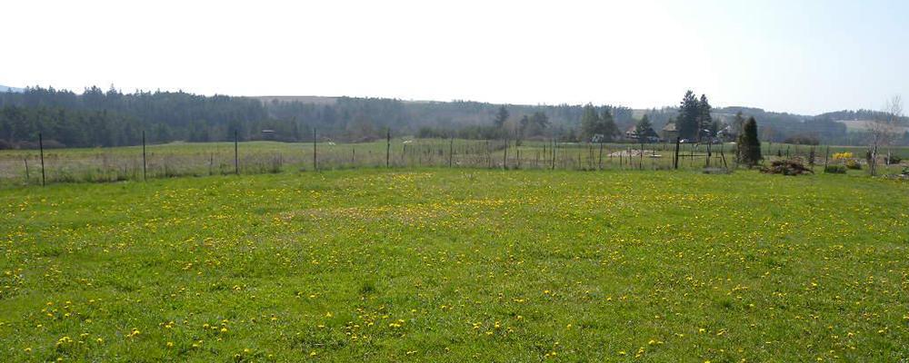 Приватизация земельных участков в Клину